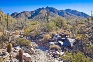 Hiking with OsteoArthritis
